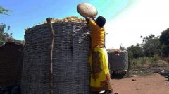 WFP Takes Diverse Approach Towards Challenges Hindering Development