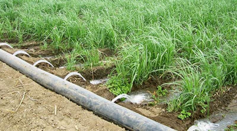 Irrigation improves food security as it helps farmers to harvest more than once in a year