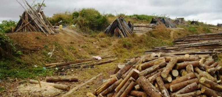Raiply Workers Issue Threats at Timber Millers Union
