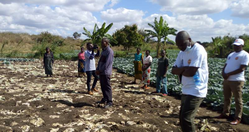 FARMSE Empowers SCTP Beneficiaries